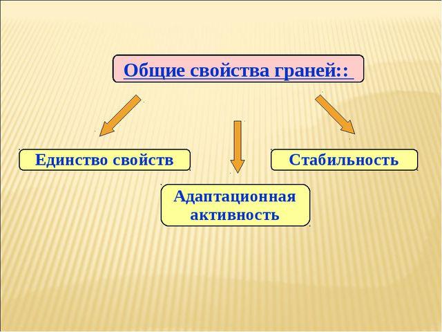 Общие свойства граней:: Единство свойств Стабильность Адаптационная активность
