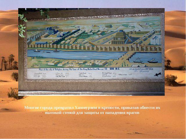 Многие города превратил Хаммурапи в крепости, приказав обнести их высокой ст...