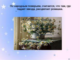 По народным поверьям, считается, что там, где падает звезда, расцветает рома