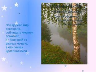 Это дерево мир освещало, соблюдать чистоту помогало, от болезней от разных