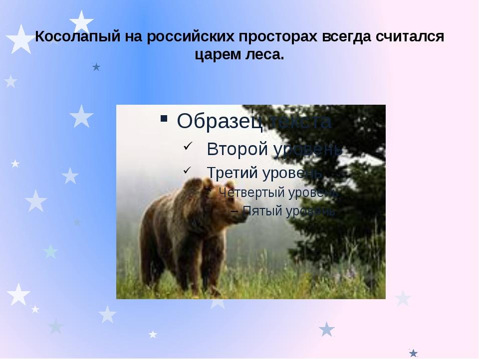 Косолапый на российских просторах всегда считался царем леса.