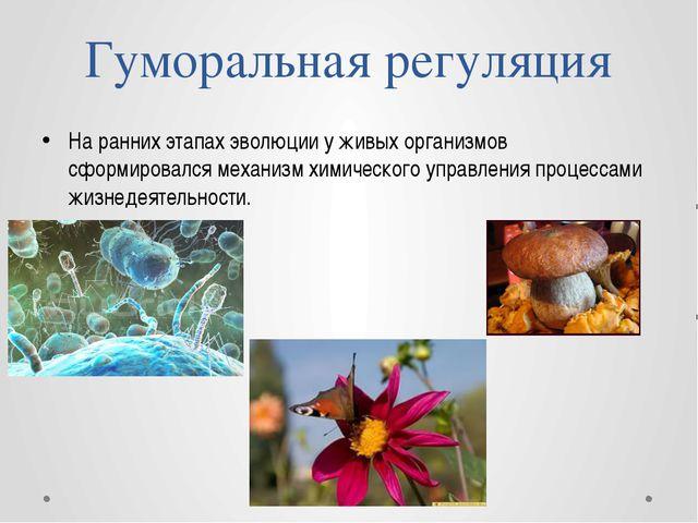 Гуморальная регуляция На ранних этапах эволюции у живых организмов сформирова...