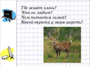 Где живёт олень? Что он любит? Чем питается зимой? Какой окраски у зверя шерс
