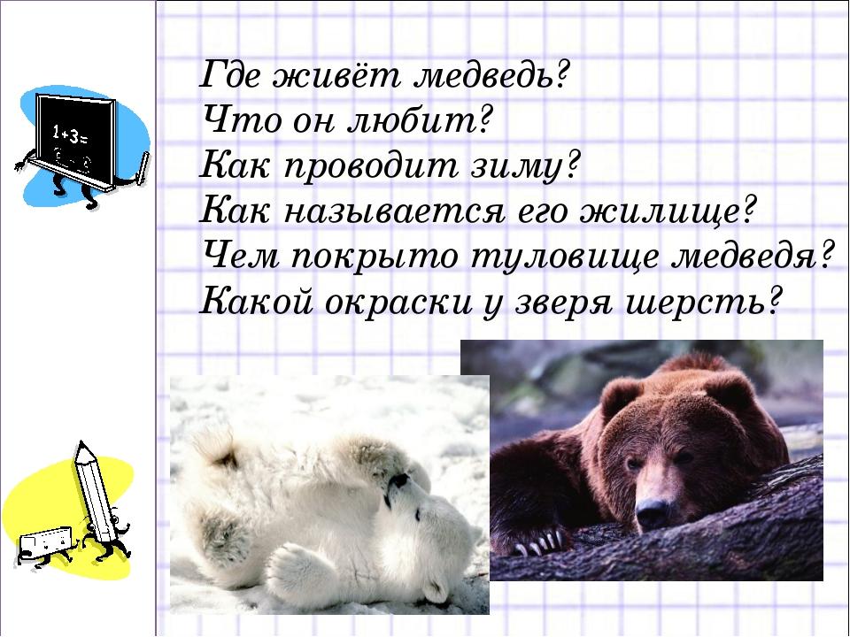 Где живёт медведь? Что он любит? Как проводит зиму? Как называется его жилище...