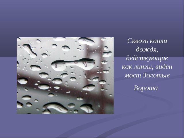 Сквозь капли дождя, действующие как линзы, виден мостЗолотые Ворота