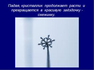 Падая, кристаллик продолжает расти и превращается в красивую звёздочку - снеж