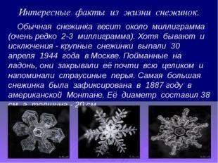 Интересные факты из жизни снежинок. Обычная снежинка весит около миллиграмма