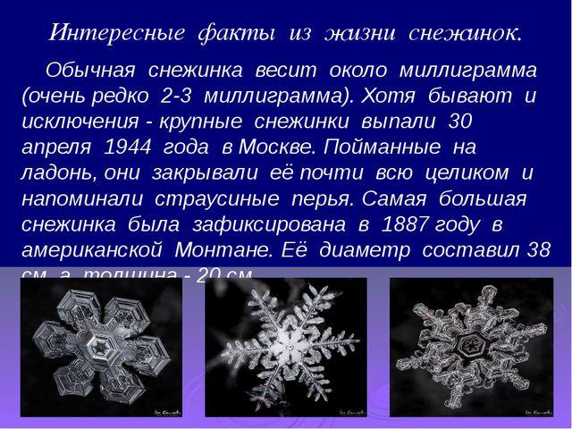 Интересные факты из жизни снежинок. Обычная снежинка весит около миллиграмма...