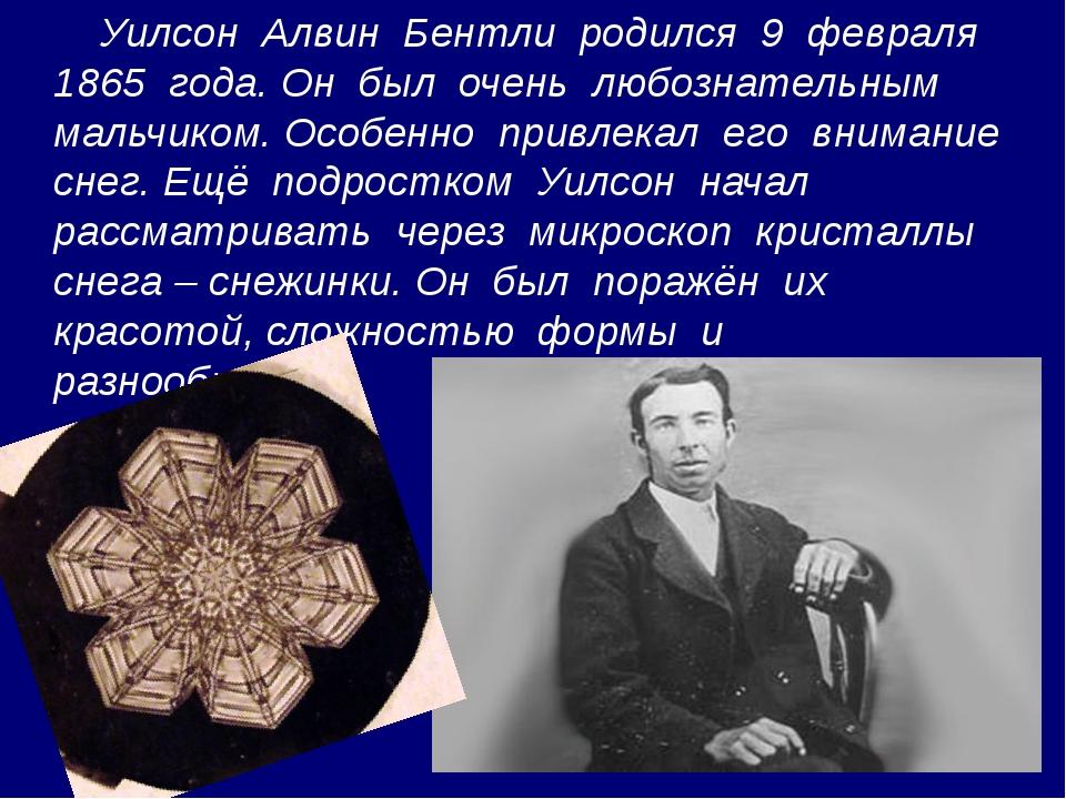 Уилсон Алвин Бентли родился 9 февраля 1865 года. Он был очень любознательным...