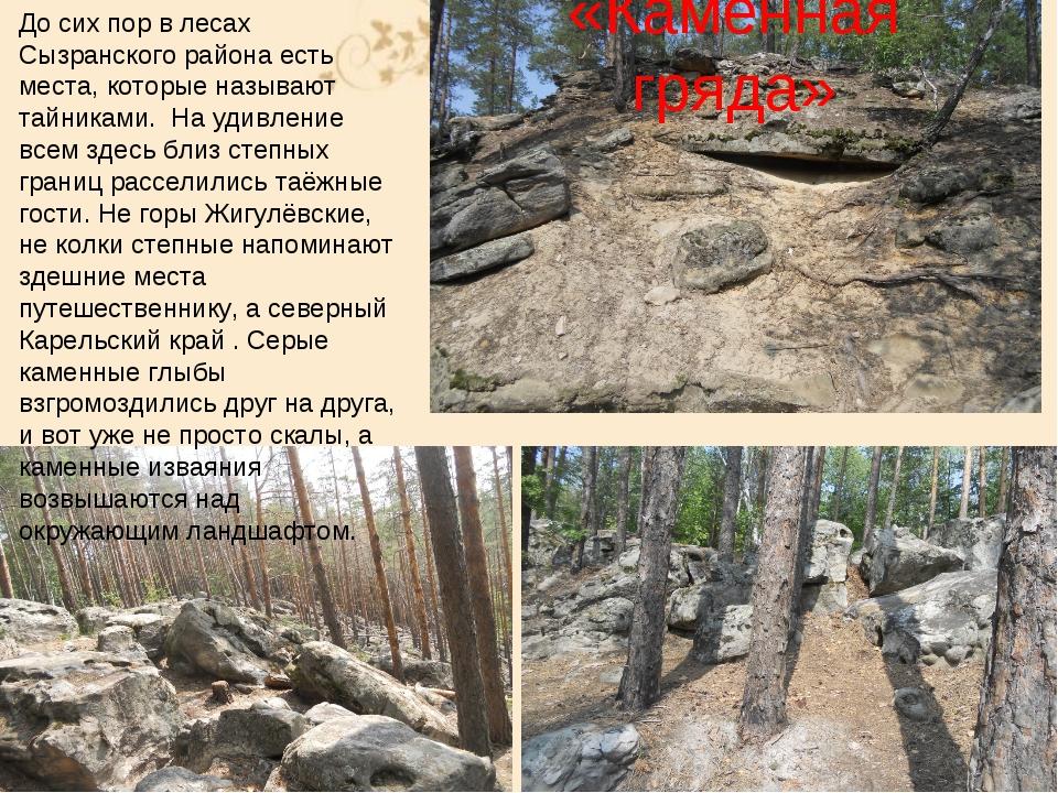 «Каменная гряда» До сих пор в лесах Сызранского района есть места, которые на...