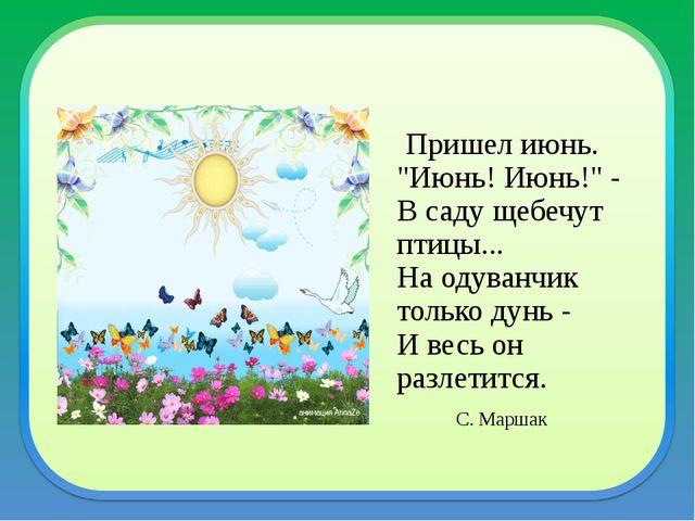 """Пришел июнь. """"Июнь! Июнь!"""" - В саду щебечут птицы... На одуванчик только дун..."""
