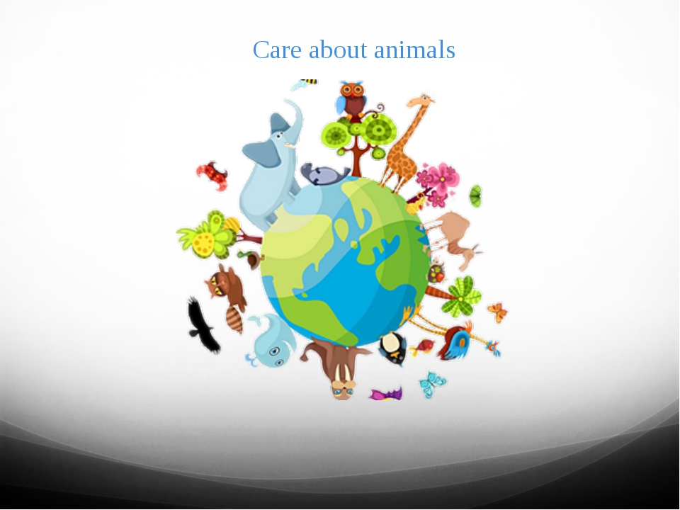 Care about animals
