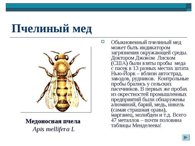 Пчелиный мед Обыкновенный пчелиный мед может быть индикатором загрязнения окр...