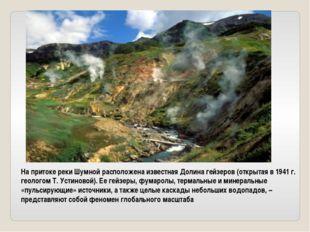 На притоке реки Шумной расположена известная Долина гейзеров (открытая в 1941