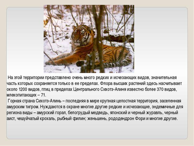 На этой территории представлено очень много редких и исчезающих видов, значи...