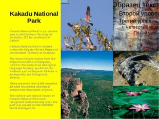 Kakadu National Park Kakadu National Park is a protected area in the Northern