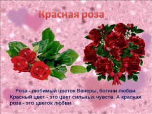 Роза - любимый цветок Венеры, богини любви. Красный цвет - это цвет сильных
