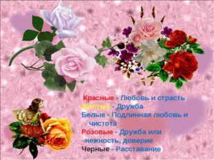 Красные - Любовь и страсть Желтые - Дружба Белые - Подлинная любовь и чистот