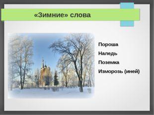 «Зимние» слова Пороша Наледь Поземка Изморозь (иней)