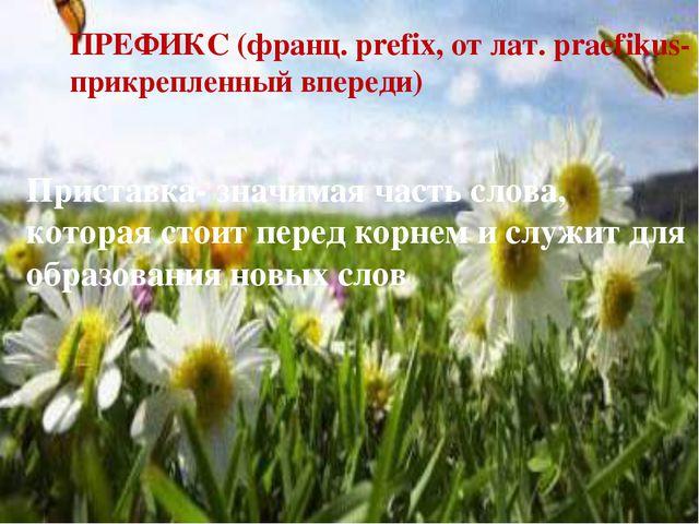 ПРЕФИКС (франц. prefix, от лат. praefikus- прикрепленный впереди) Приставка-...