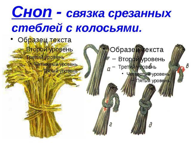 Сноп - связка срезанных стеблей с колосьями.