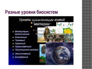 Разные уровни биосистем