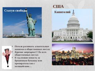 США Капитолий Статуя свободы Нельзя распивать алкогольные напитки в обществе
