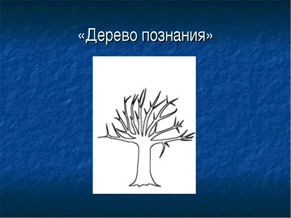 «Дерево познания»