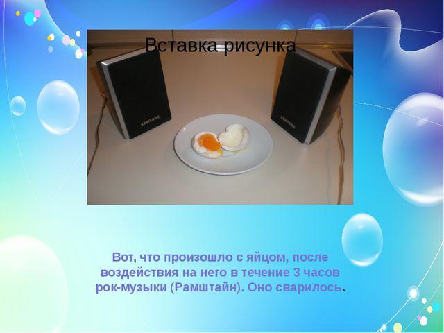 Вот, что произошло с яйцом, после воздействия на него в течение 3 часов рок-м...
