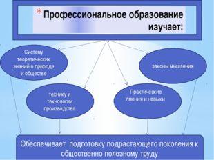 Профессиональное образование изучает: технику и технологии производства закон