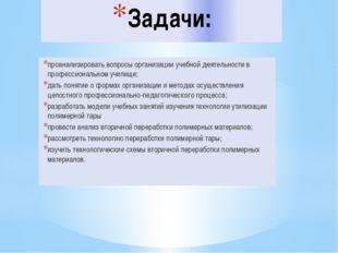 Задачи: проанализировать вопросы организации учебной деятельности в профессио