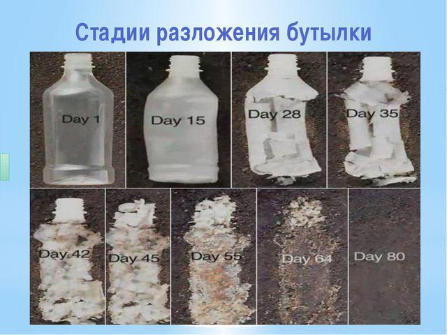 Стадии разложения бутылки