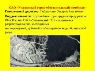 ОАО «Учалинский горно-обогатительный комбинат» Генеральный директор: Гибадулл