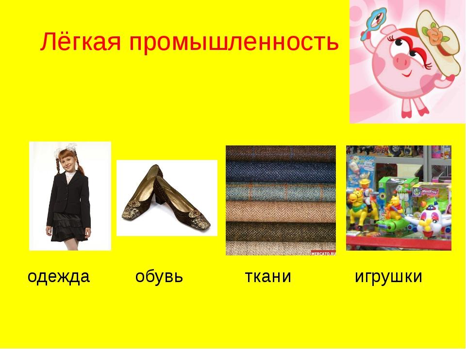 Лёгкая промышленность одежда обувь ткани игрушки