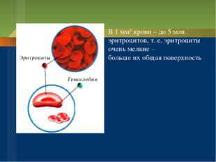 В 1 мм3 крови – до 5 млн. эритроцитов, т. е. эритроциты очень мелкие – больше