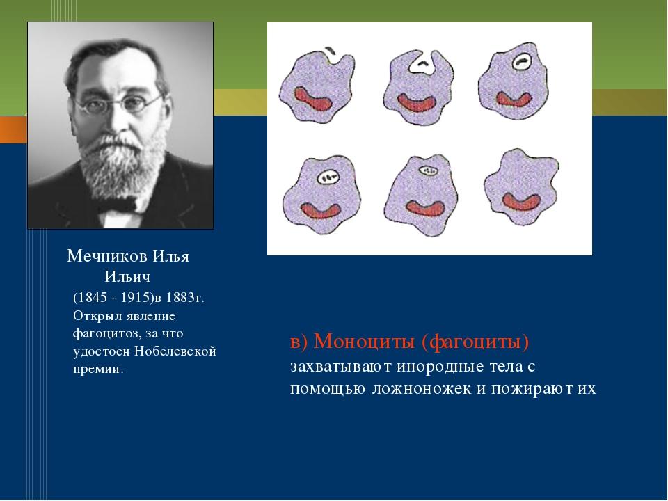 Мечников Илья Ильич (1845 - 1915)в 1883г. Открыл явление фагоцитоз, за что уд...