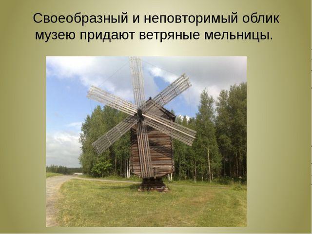 Своеобразный и неповторимый облик музею придают ветряные мельницы.