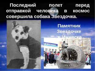 Последний полет перед отправкой человека в космос совершила собака Звездочка.