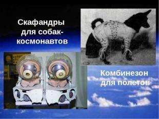 Скафандры для собак-космонавтов Комбинезон для полетов