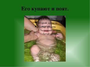 Его купают и поят.