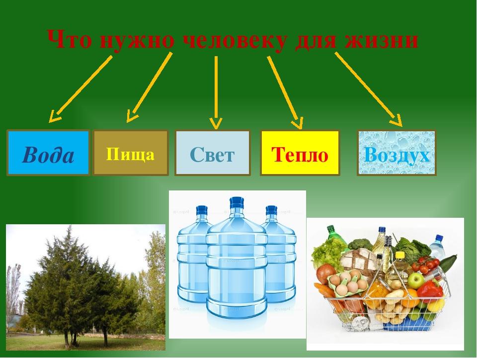 Что нужно человеку для жизни Пища Тепло Вода Свет Воздух