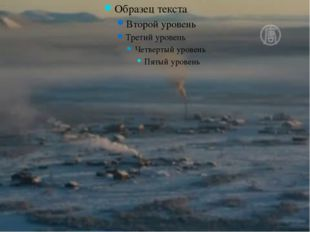 Блум түймедағы «Түрлі-түсті теңіздер» ойыны (Әр дұрыс жауап 1 ұпаймен есептел