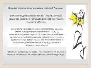 В Россию подсолнечник попал приПетре I , который, увидев это растение вГолл