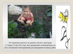 Исследование началось на дачном участке в пригороде г. Самара 16 мая 2013 год