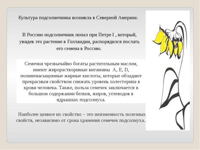 В Россию подсолнечник попал приПетре I , который, увидев это растение вГолл...
