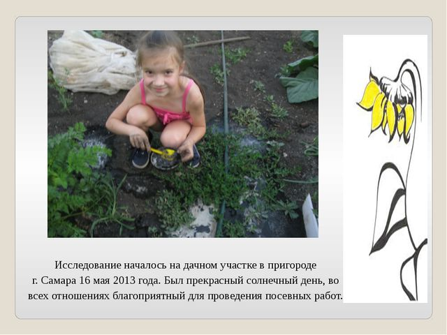 Исследование началось на дачном участке в пригороде г. Самара 16 мая 2013 год...