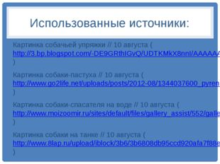 Использованные источники: Картинка собачьей упряжки // 10 августа (http://3.b