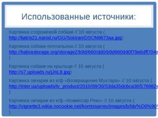 Использованные источники: Картинка сторожевой собаки // 10 августа (http://li