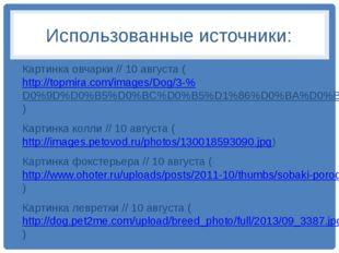 Использованные источники: Картинка овчарки // 10 августа (http://topmira.com/