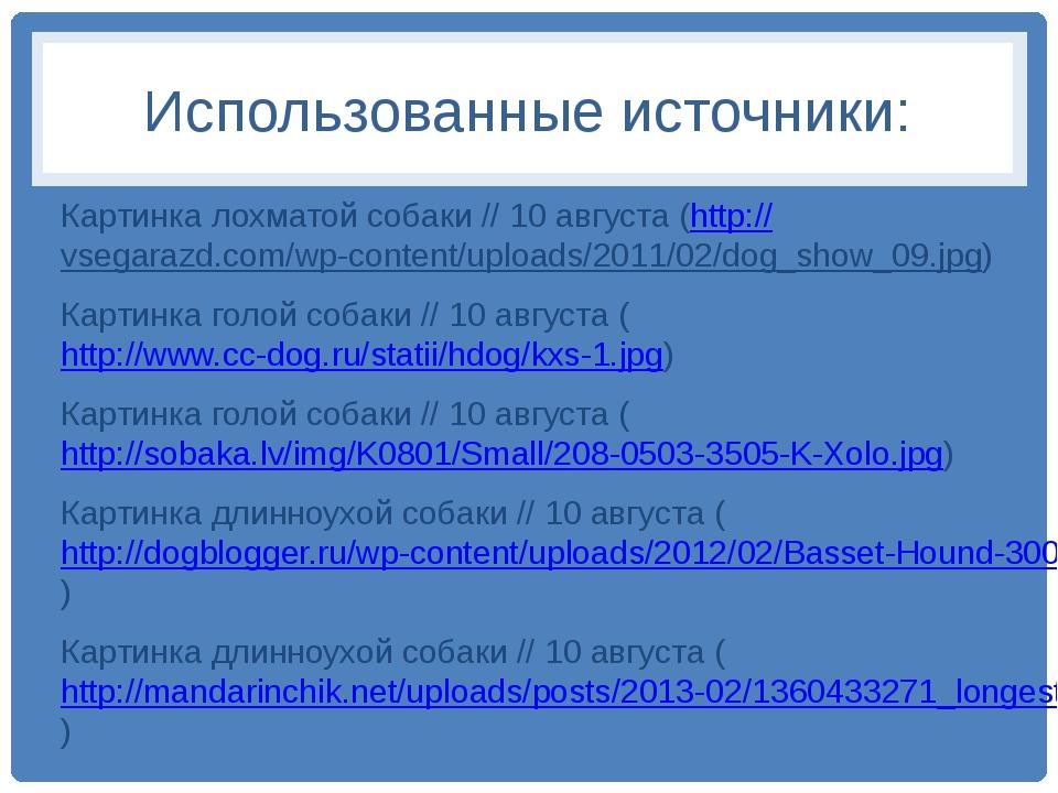 Использованные источники: Картинка лохматой собаки // 10 августа (http://vseg...